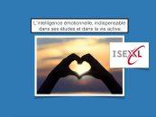 L'intelligence émotionnelle, indispensable dans ses études et dans la vie active